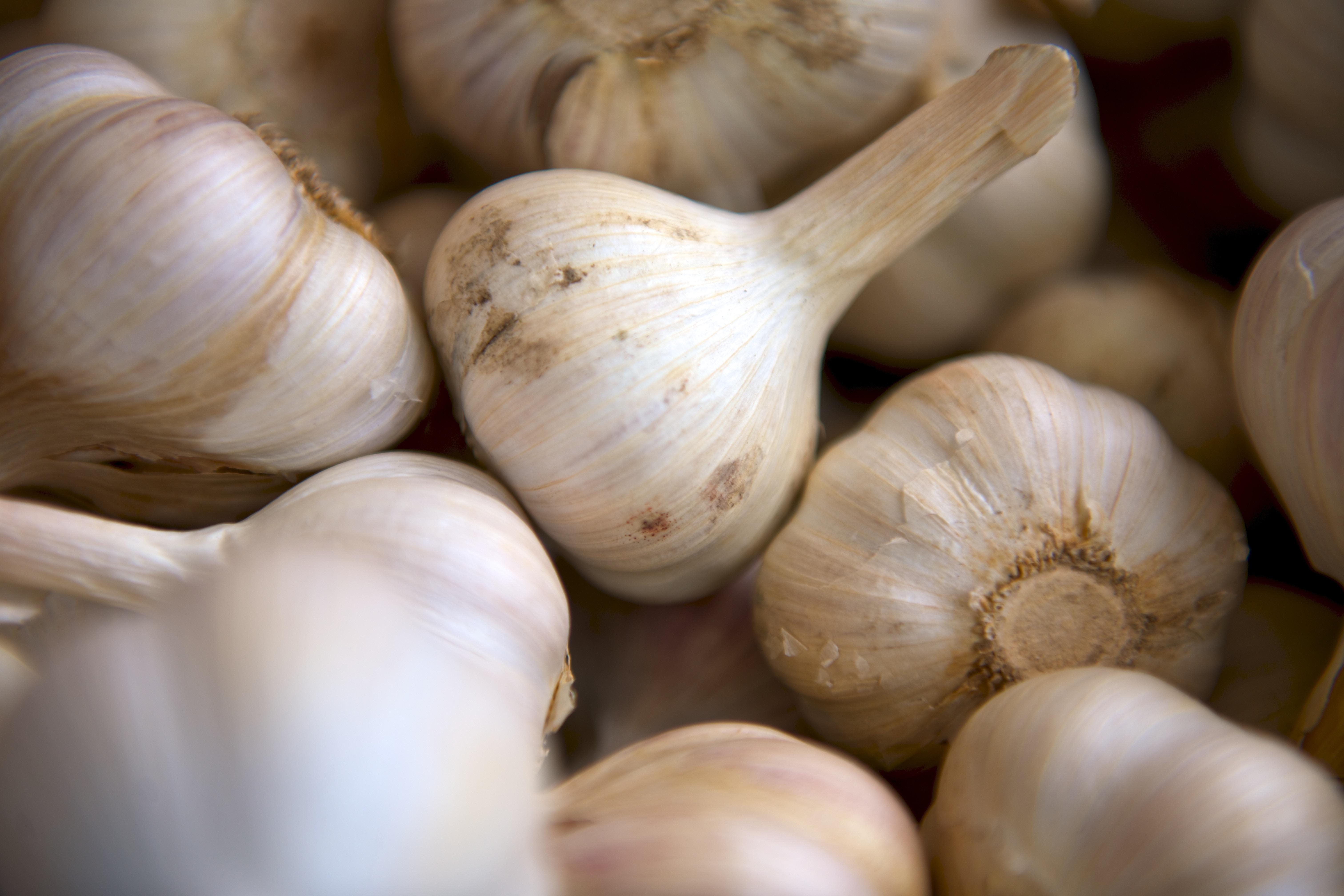 Top 10 superfoods - Garlic